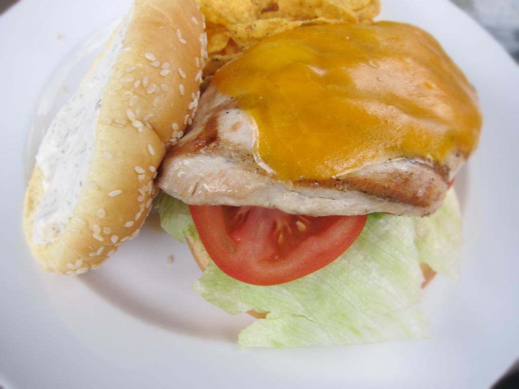 chook burgerSnapseed