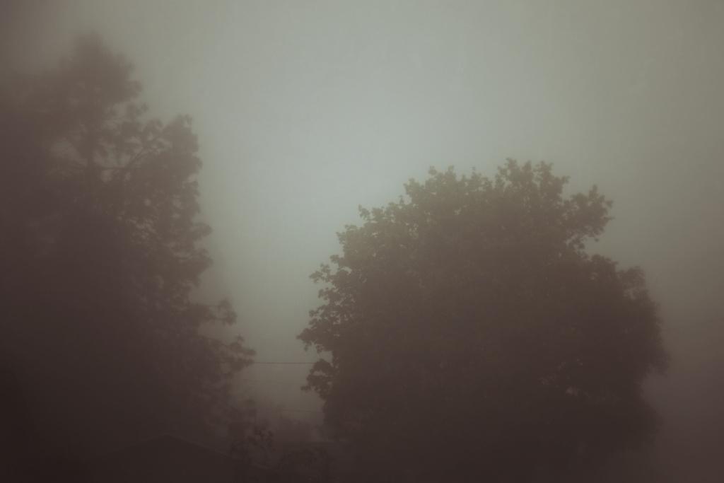 foggy am 2
