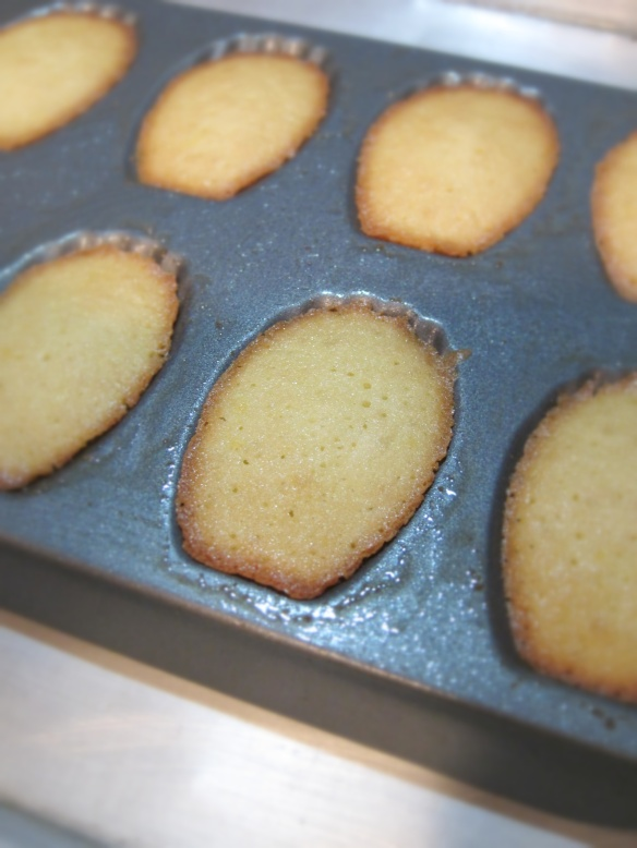 baked madelines