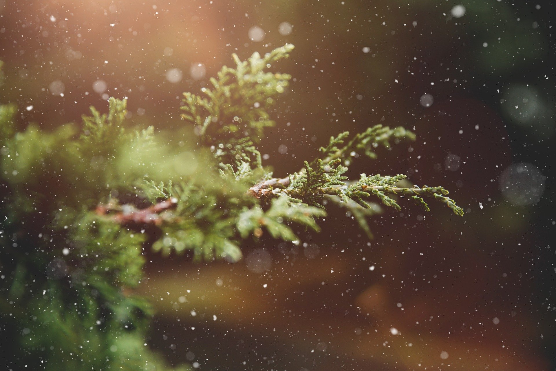 winter-1791370_1920